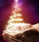 Miracle Christmas!!!