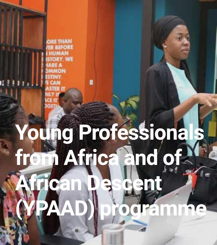 UNFPA recruits Young Professionals from Africa and of African descent